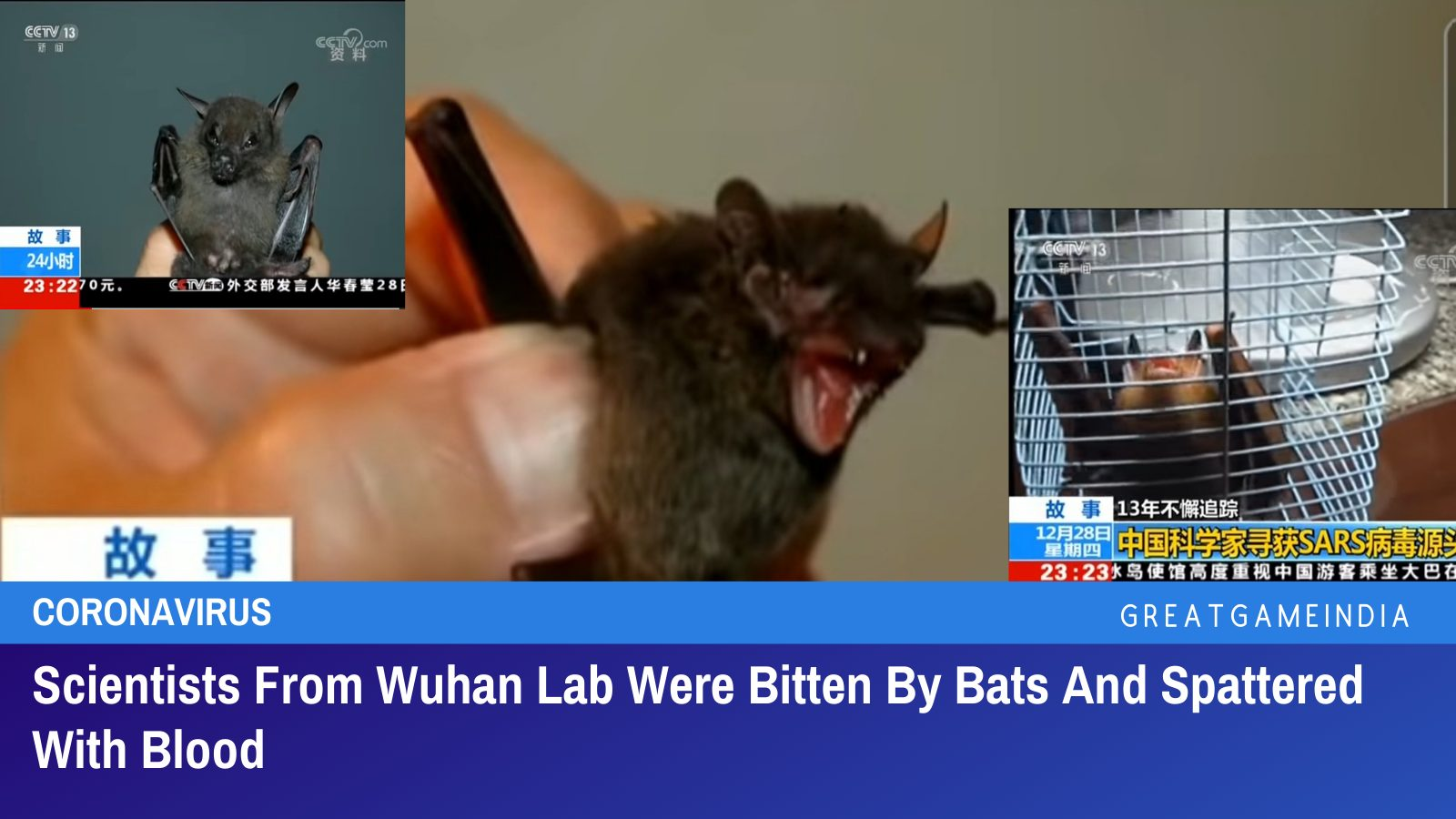 Scientists Experimenting COVID-19 Virus At Wuhan Lab Were Bitten By Bats And Spattered With Blood